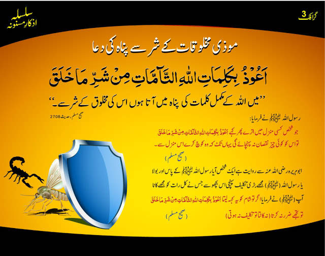 dua-for-poisonous-insects